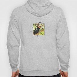 Stag Beetle Hoody