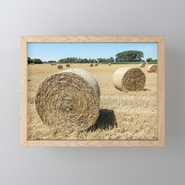 Filed harvest Framed Mini Art Print