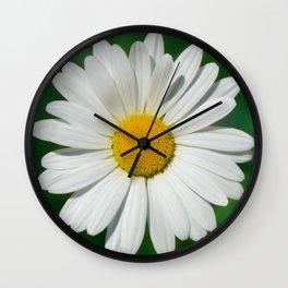 Daisy Macro White 251 Wall Clock