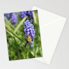 Sweet Hyacinth Stationery Cards