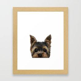 Yorkshire Terrier Mix colorDog illustration original painting print Framed Art Print
