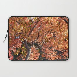 Fall Trees Laptop Sleeve