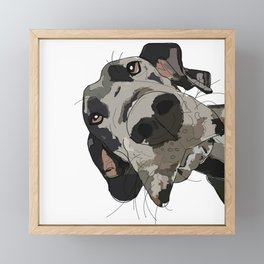 Great Dane dog in your face Framed Mini Art Print