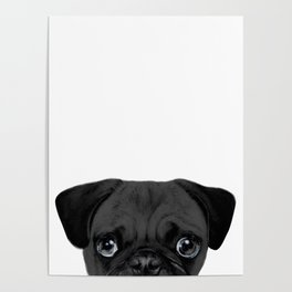 Black Pug, Original painting by miart Poster
