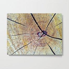 Wood Cracks Metal Print