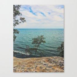 Summer walk in the garden Canvas Print