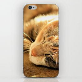 Sleepy Kitty Pretty Kitty iPhone Skin