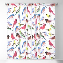 Colorful birds in tetrad color scheme Blackout Curtain