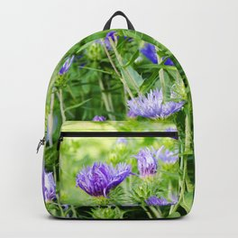 Stokes' Aster Backpack