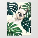 Sneaky Llama with Monstera by bignosework