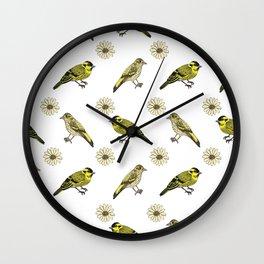 Siskin daisies Wall Clock