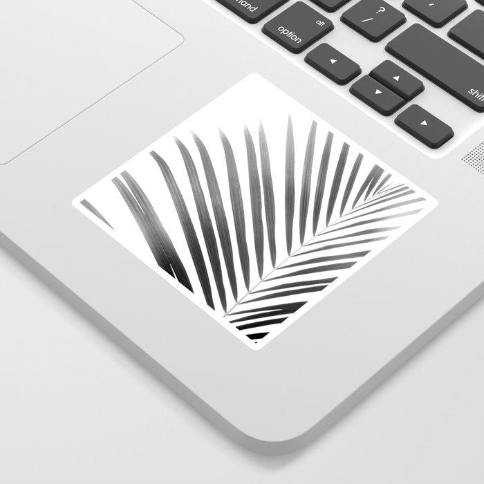 Palm Leaf | Black and White Sticker