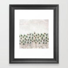 Peacock Field Framed Art Print