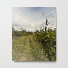 a path in the highlands Metal Print
