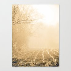 Into Obscurity  Canvas Print