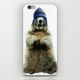 Wooly Marmot by Crow Creek Cool iPhone Skin