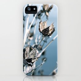 Winter Seed Pods iPhone Case