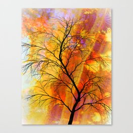 the naked tree Canvas Print