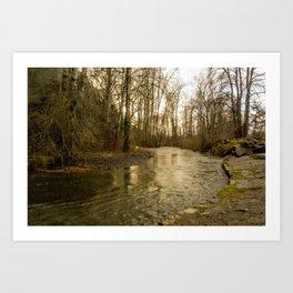 Rios de Oregon 2 Art Print