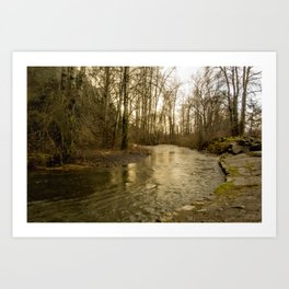 Rios de Oregon 2 Art Print