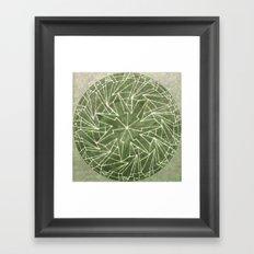 Spinny 1 Framed Art Print