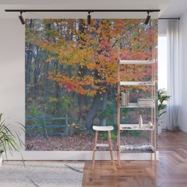 Autumn Trail at Lums Wall Mural