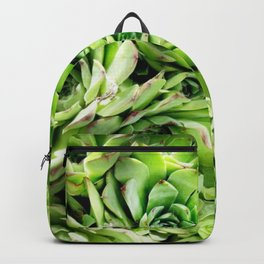 GREEN HENS N' CHICKS SEDUMS-SUCCULENTS Backpack