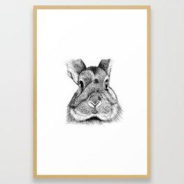 Bunny Face Framed Art Print