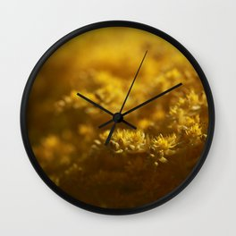 Sedum Wall Clock