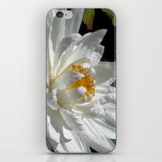 Lotus White iPhone & iPod Skin