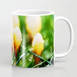 Crocus Flower Art Coffee Mug
