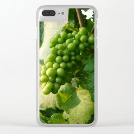 White Grapes at Waupoos Clear iPhone Case