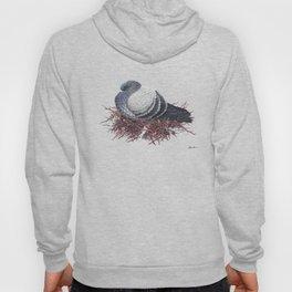Rock Pigeon Hoody
