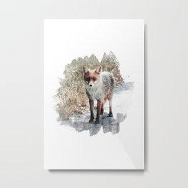 How I met a Fox Metal Print