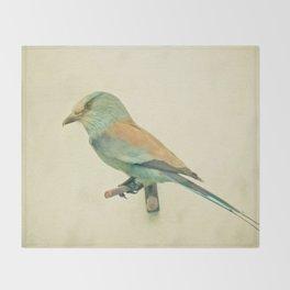 Bird Study #2 Throw Blanket