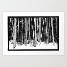 Norwegian forest VIII Art Print