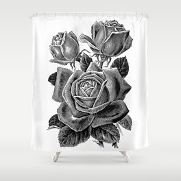 Engraved Rose Shower Curtain