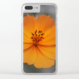 Lone Cosmos Clear iPhone Case