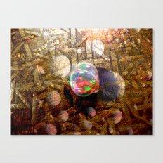 10gn1 Canvas Print