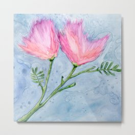 Albizia Silk Flowers Metal Print