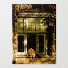 Nap in the Sun Canvas Print