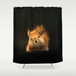 Starring Squirrel Shower Curtain