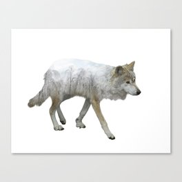 wolf double exposure in the winter time Canvas Print