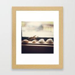 Found  {Summer Edition} Framed Art Print