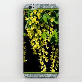 GOLDEN CHAIN TREE LABURNUM ALPINUM iPhone Skin