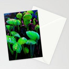 Northwoods Shrooms 887 Stationery Cards