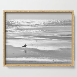 BIRDIE WALKING ON THE BEACH AT SUNSET - BLACK AND WHITE Serving Tray