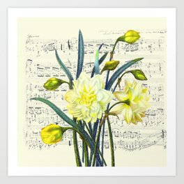 Daffodil Spring Song Art Print