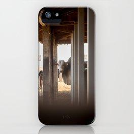 Exchange of Glances iPhone Case