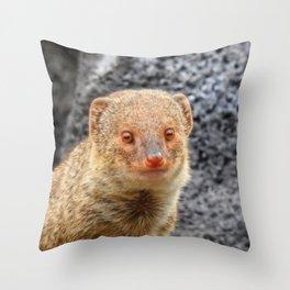 Mongoose Throw Pillow